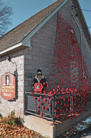 poppy display outside of the museum