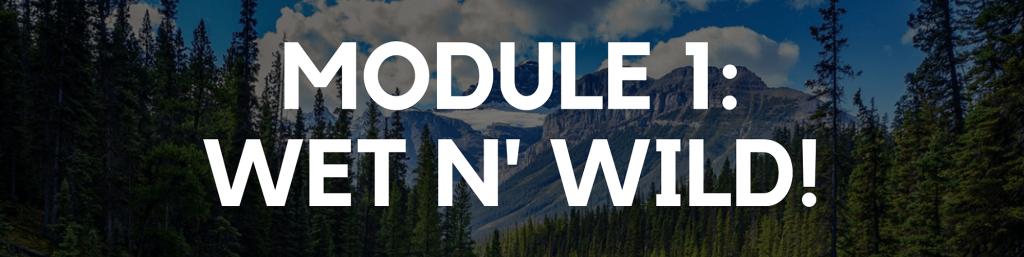 Module 1: Wet and Wild